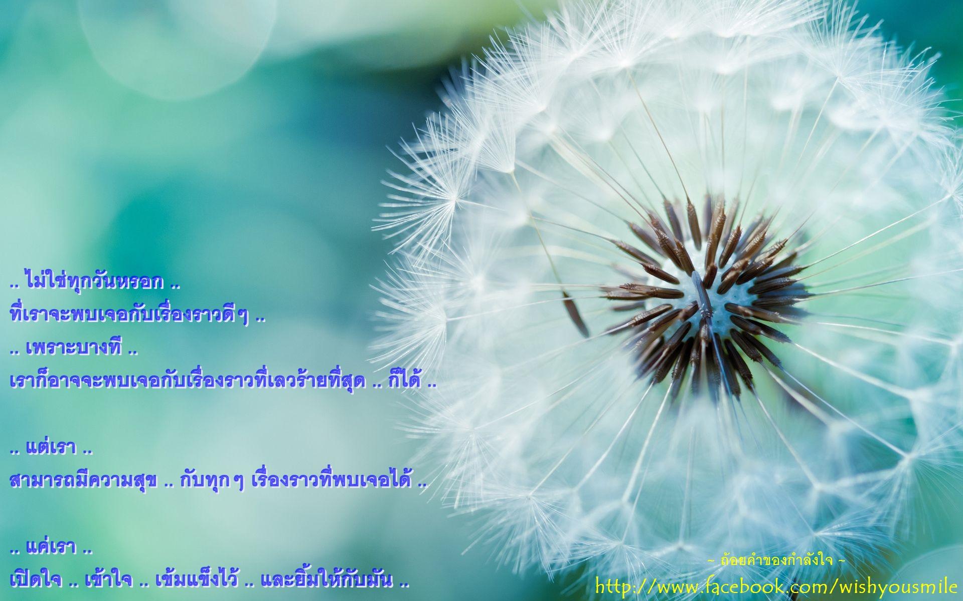 551022388507255.jpg